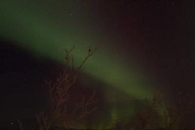 Abisko Northern Lights 18