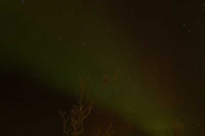 Abisko Northern Lights 12