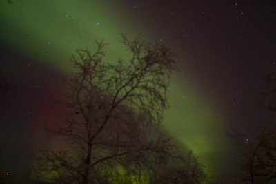 Abisko Northern Lights 27
