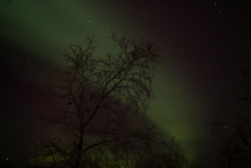 Abisko Northern Lights 28