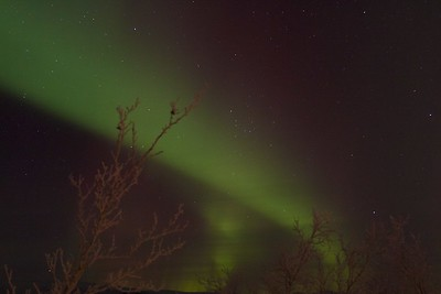 Abisko Northern Lights 19