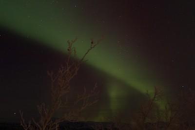 Abisko Northern Lights 21