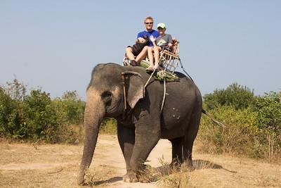 Thailand HuaHin Elephant 13