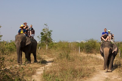 Thailand HuaHin Elephant 21