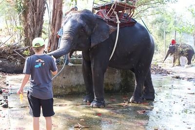 Thailand HuaHin Elephant 27