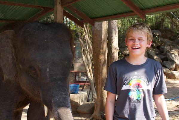 Thailand HuaHin Elephant 61