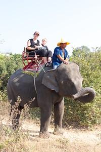 Thailand HuaHin Elephant 17