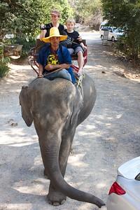 Thailand HuaHin Elephant 6