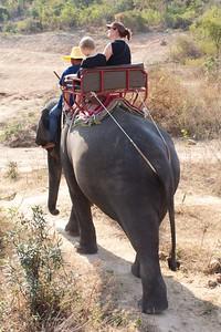 Thailand HuaHin Elephant 24