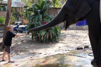 Thailand HuaHin Elephant 38