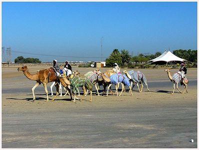 Dubai, 2003 Feb