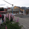 Looking over to the Albatros Hotel in Ushuaia (the light brown coloured and glass building)
