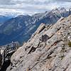 Banff Gondola - Spot the Squirrel!