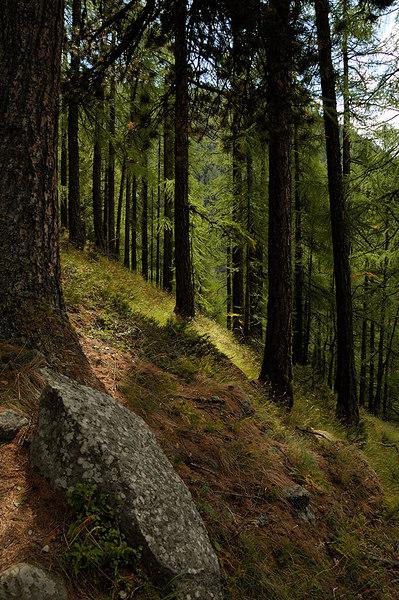 Walking down from Rothorn to Zermatt