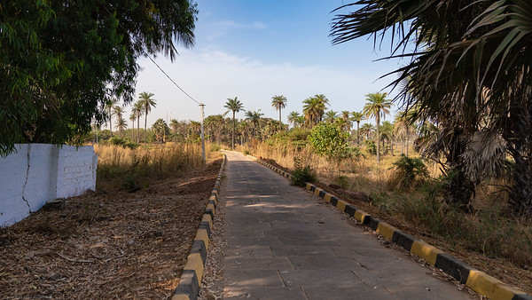 Track to Palm Beach Hotel - The Gambia 2020