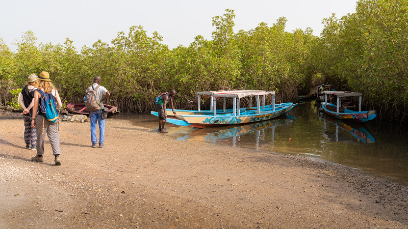 Docked at the Lamin Rice Fields - The Gambia 2020