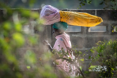Lady Carrying - The Gambia 2020