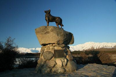 A Monument to thank all the hard working Dogs in the area!