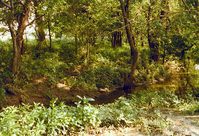 View of Elm Creek on Land 1975