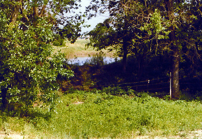 View of Elm Creek & Pond 2 on Land 1975