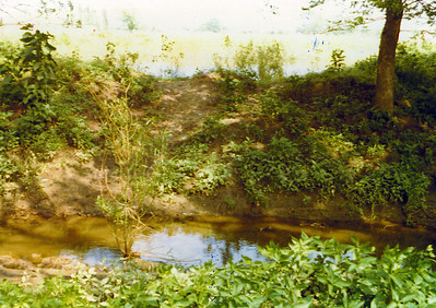 View of Elm Creek & Pond 1975