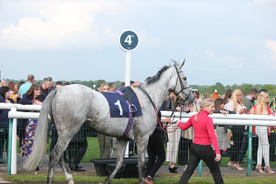 Lady Bergamot at Doncaster 18.5.19.12