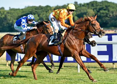 Sleeping Lion wins at Newbury 4.7.18