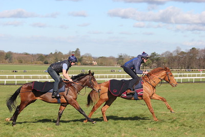 Exceed & Excel ex Firenze & Magistrate 09.03.2017.2