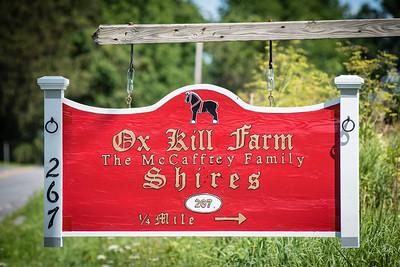 Ox Kill Summer Party 2017