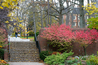 Miami University campus Copyright 2005, Tom Farmer