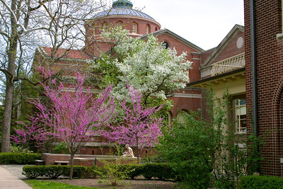 Miami University campus Alumni Hall Copyright 2004, Tom Farmer