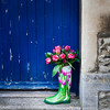Tulips in Wellington boot