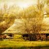 The Elkhorn Barn