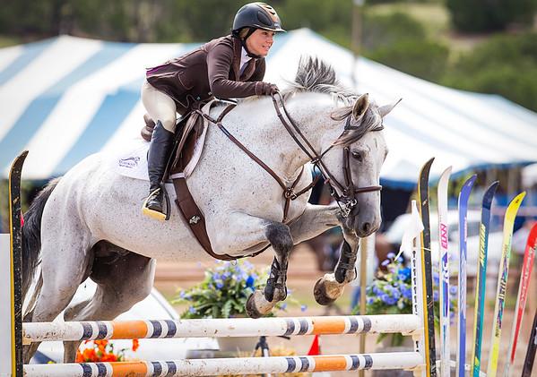 Story Brook Sport Horses