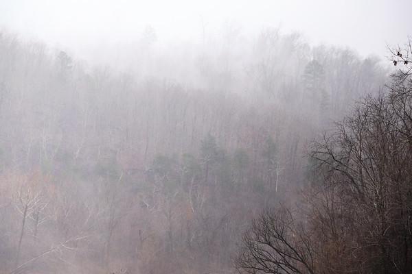 Mist Above the Black
