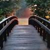 Stockton Bridge 2
