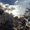 Autumn Sky 3