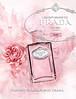 Les Infusions de PRADA (Rose) 2017 Hong Kong  'The new fragrance by Prada'