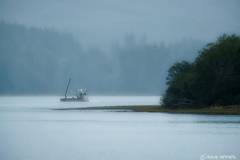 Oyster Farming in the Fog