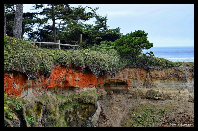 Lichens and Sandstone