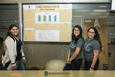 PAL Research Poster session 5 17 17-5