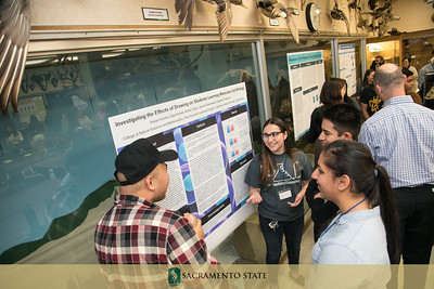 PAL Research Poster session 5 17 17-24