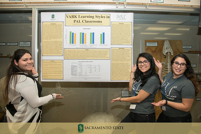 PAL Research Poster session 5 17 17-4