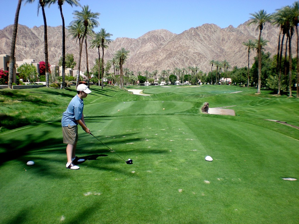 Palms lining the fairways looking into the mountains
