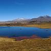 LAUCA NATIONAL PARK - CHILE