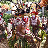 Sing Sing Festival, Mount Hagen - Asamuga tribe. The large shells, the so-called kina, are believed to protect them from danger, whilst the wonderful feathers in their hair declare their social status and their husband's power