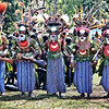Hagen tribe group dancing, Mount Hagen Sing Sing Festival - The Hagen warriors paint  their faces in the special colours and motifs