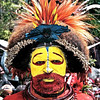 Huli tribe, warrior, Mount Hagen Sing Sing - The colours are made from plant pollen mixed with water or saliva and his wig is decorated with birds of paradise feathers.