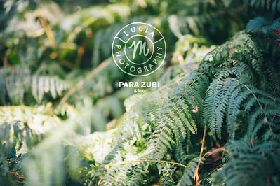 pM | ZUBI ss16