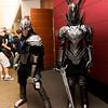 Knight Artorias and Black Knight